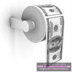 100 dollár wc papír